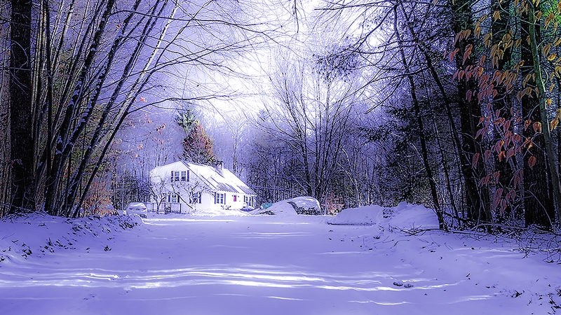 Winter Morning in New Hampshire