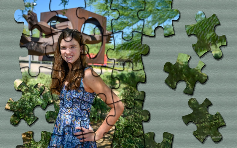 Jig Saw Puzzle