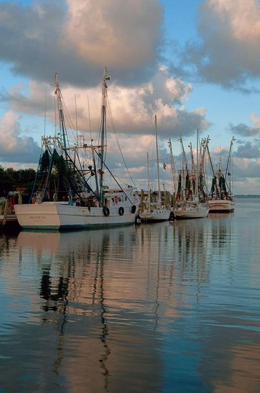 Shrimp Trawlers on Shem Creek, Mount Pleasant, S.C.